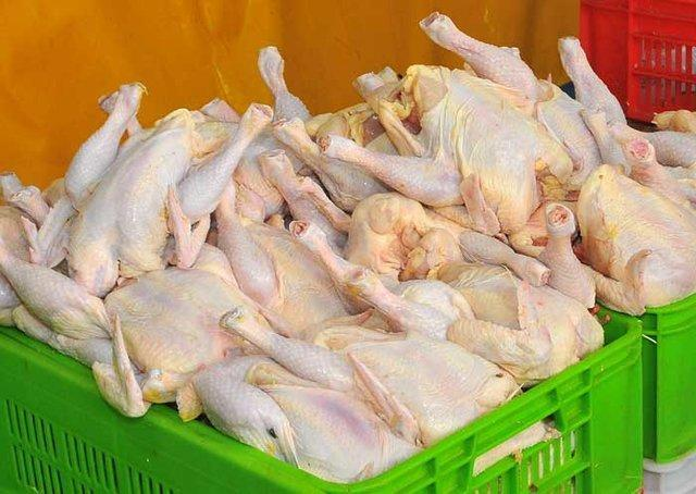 در گفت و گو با خبرنگاران مطرح شد؛ اما و اگرهای تاثیر توزیع اینترنتی گوشت و مرغ در کنترل بازار