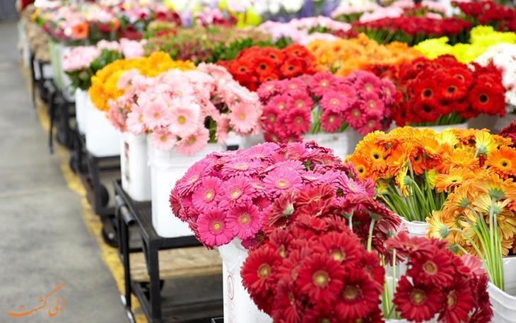 بازارهای گل تهران کجا هستند؟