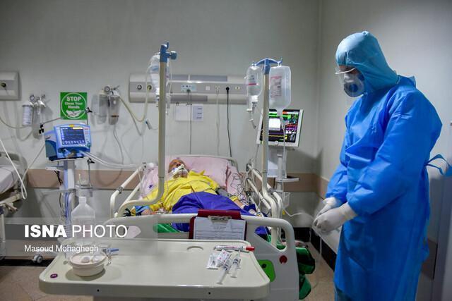 رییس بیمارستان ولی عصر نداجا در رشت: تا به امروز 50 درصد بیماران این بیمارستان بهبود یافته اند