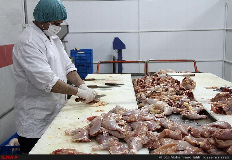 نرخ هر کیلو مرغ در بازار 30 هزار تومان