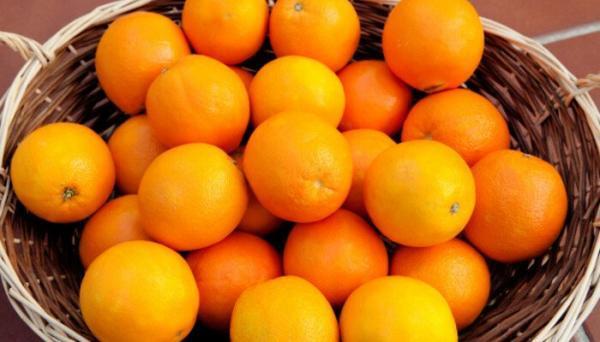 کالری پرتقال؛ هر عدد پرتقال چقدر کالری دارد؟